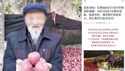官方回应甘肃600万斤苹果滞销:有人恶搞,大丰收了但没滞销