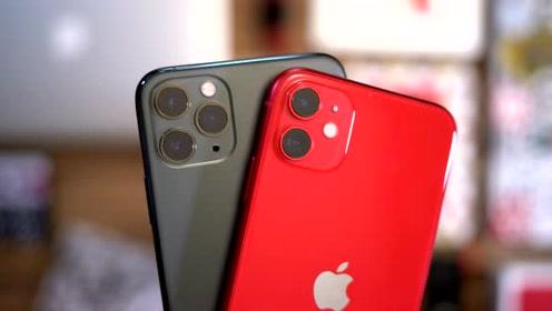 红色 iPhone 11上手体验,这才是苹果手机的颜值担当