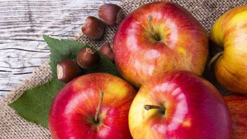 苹果饭后吃好,还是饭前吃好?苹果早晨吃、晚上吃,对身体都很好