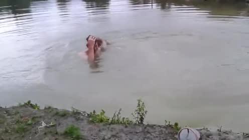 主人假装溺水!接下来狗狗的反应忒暖心了