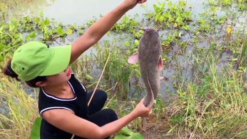 钓鱼:用花蟹钓塘鲺鱼,有点浪费了