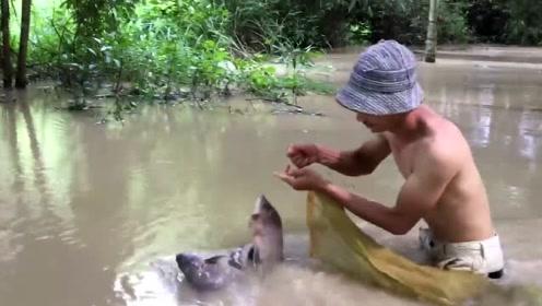 你见过树林里捕鱼吗,大雨过后,连树林里跑的都是鱼