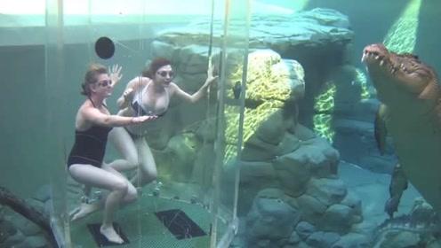 这么酷的游泳池,此乃天上仙境,这么炫酷!