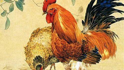 生在农历这三个月的生肖鸡,多财多福一生,必是有出息之人!