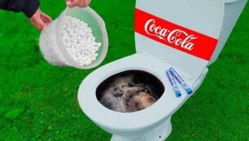 装满可乐的马桶放入曼妥思,能制作出瀑布吗?