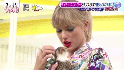 霉霉在日本节目上看到小奶猫就把持不住了,全程爱不释手