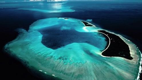 这个海域风平浪静,海水透明度高达72米,但却没人敢去