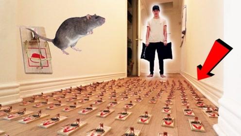恶搞:用1000个老鼠夹铺满房间,大哥看到后会怎样?
