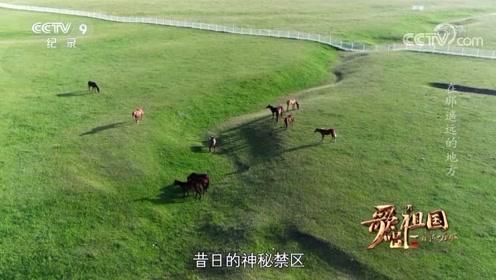 【歌唱祖国·一首歌一座城】青海海北州 《在那遥远的地方》