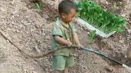 同龄的孩子都在玩,而这小家伙却在帮姥姥干活,看着可真心酸!