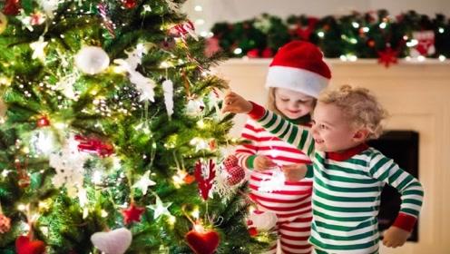 圣诞树不要花钱去买,学会这招,自己在家就能制作