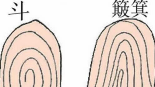 """手指上""""斗""""的不同数量,代表了什么命运?看看你是这样吗?"""