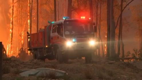 澳大利亚新州大火肆虐 整个森林笼罩在浓烟当中