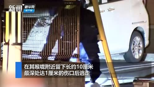 日本小学女生放学路上遭遇袭击:14岁初中男生突然靠近用刀割喉