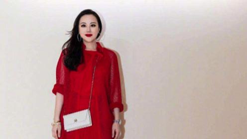 """56岁章小蕙看起来真""""贵"""" 穿酒红色大衣高雅气质 一般人学不来"""
