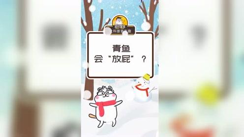 """青鱼会""""放屁""""?"""