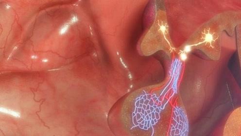 男人患上前列腺炎,会有哪些后果?忠言:这2大危害,不容忽视