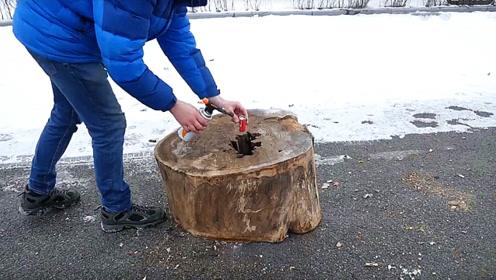 老外把魔鬼鞭炮塞进木桩里,木桩能被炸开吗?结果你想不到!
