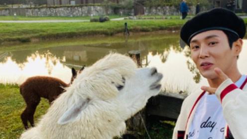 李汶翰与羊驼自拍达成和解 曾互喷口水引网友爆笑