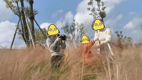 贵阳两女子带娃钻粉黛乱子草拍照:我们踩的地方没有草