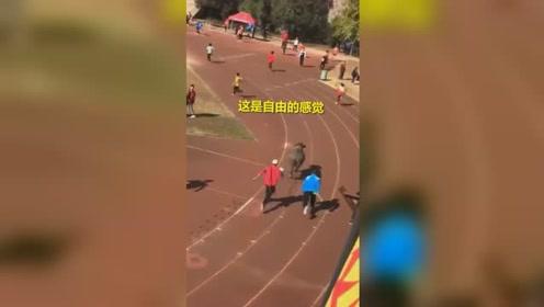 体育馆内正举办运动会 突然闯入一头水牛肆意冲撞