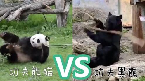 """你pick谁?日本黑熊爱耍棍 与""""功夫熊猫""""隔空对决"""