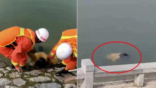 花季少女与家人口角后离家出走 被发现时漂浮在河面已溺亡多日