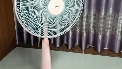 夏天太热你还能忍下去?我是忍不了,用了这招比开空调还得劲