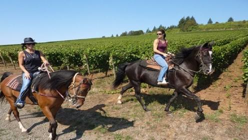 女子捡到一匹小马,结果越养越不对劲,专家见到:好宝贝啊!