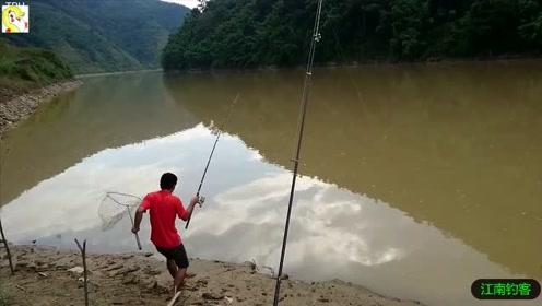 大河边撒下三根钓竿,看着第一竿钓拉动就立马提钓,收获一条俩斤的肥鲤鱼