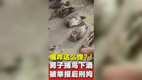 捕鸟真的犯法!黑龙江一男子捕鸟当下酒菜被刑事拘留