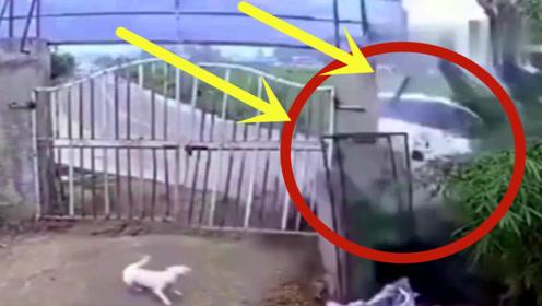 过弯还要加速?家中铁门轰然倒塌,不是监控谁敢信!