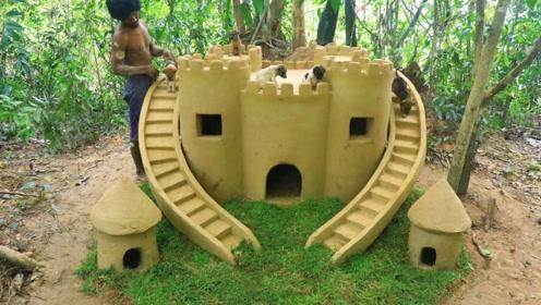 爱狗小伙用木棍黄土做城堡,给小流浪狗们一个家,真有爱心!