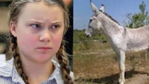 十动然拒!瑞典环保少女赴马德里参会 有协会提供驴作交通工具
