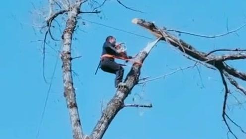 路上遇见的惊险画面,锯掉一根树枝的时候,另一个居然瞬间倒下来!