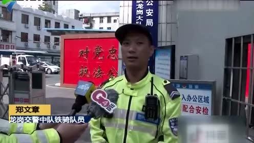 深圳:一群骡马闹市中奔跑 交警出动控制