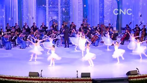 AI合成主播│乌兹别克斯坦庆祝宪法日