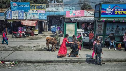 """去尼泊尔旅游,为什么路边有人递东西不能接?导游透露""""猫腻"""""""