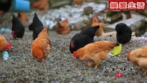 《舌尖上的中国》薄壳米做成薄壳粿让人流口水!美味由此而生