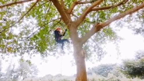 神仙选修课!四川大学开设攀树课,网友:又是别人家的!