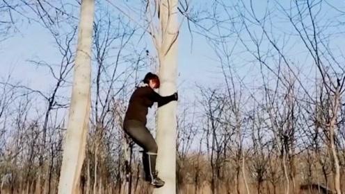 伐木工发明铁鞋上树如猿,网友调侃金刚狼的脚扎