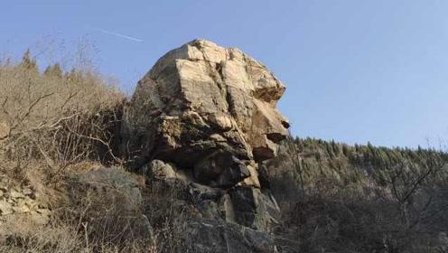 """山东""""狮身人面像""""走红,山上垃圾大增,村里打算开发成景点"""