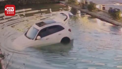 悲伤那么大!主人下车忘熄火 狗狗将车开进池塘