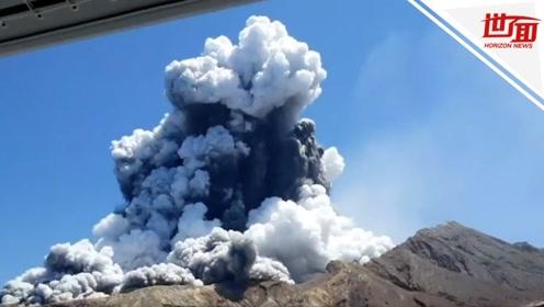 新西兰警方调查火山致死案 旅游公司或面临近700万罚款
