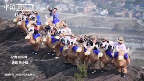 """湖南举行另类登山赛选手""""骑牛""""上山"""