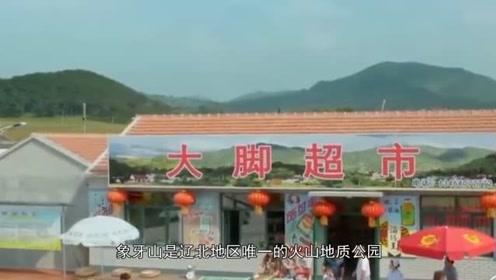 """因赵本山""""爆红""""的村庄,一年接待30万游客,如今怎样了?"""