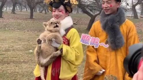 不倒翁小姐姐小哥哥去动物园巡演了,小动物太有灵气了