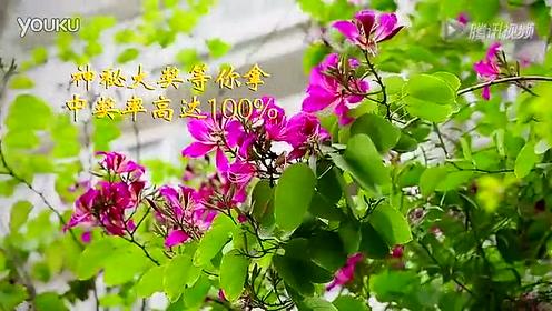 富和·海岸城3期漠江壹号-腾讯房产-阳江站