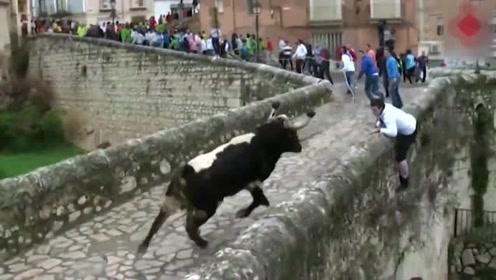 斗牛比赛作死者差点被牛顶,被迫跳下三层楼高的建筑!