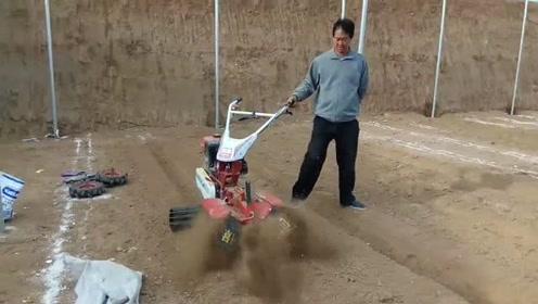 农民兄弟在蔬菜大棚里干农活,一个手就把活干了,这也太牛了